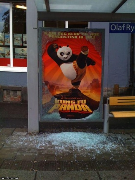 kung_fu_panda_is_real